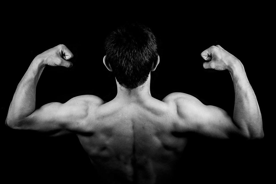 réussir en musculation