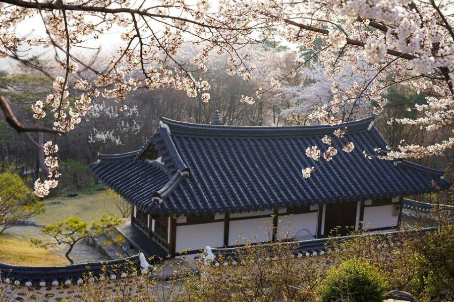 voyage culturel coree du sud